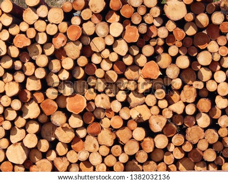 Firewood stacked background. Firewood stacked and prepared for winter #1382032136