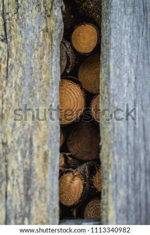 Firewood storage house, old building, gray boards, planks #1113340982