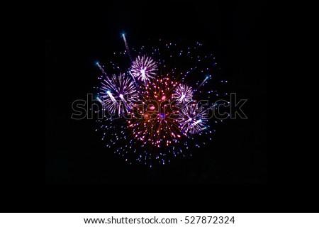 firework #527872324