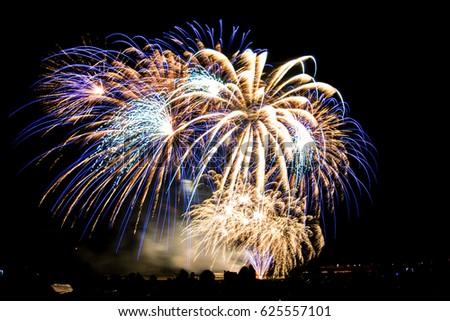 Fireworks #625557101