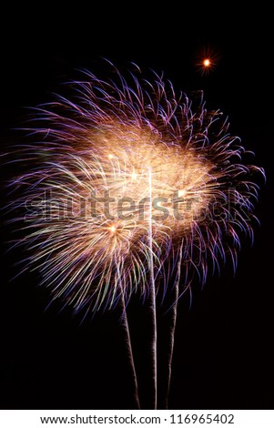Fireworks exploding against night sky