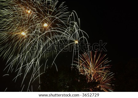 Fireworks exploding in the sky over a park