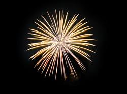 Fireworks  in a black background