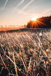 First frost of the year in autumn with golden colorful sunrise sun star and a frozen white nature landscape