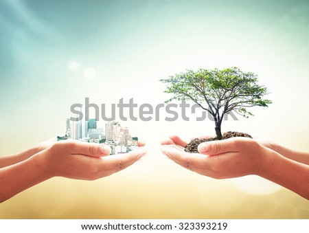 First, human hand holding city. Second, human hand holding big plant over blurred beautiful nature background. Ecological City World Environment Day Sustainable Development LIT ROI Spring CSR concept.