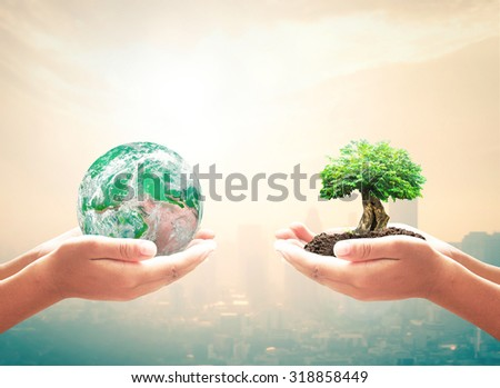 First, human hand holding green planet. Second, big plant and soil over city background with circle light. Ecology, World Environment Day, Investment concept. Elements of this image furnished by NASA.
