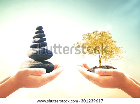First, human hands holding balanced seven Zen stones. Second, human hands holding golden plant over blurred beautiful nature background. Ecology, Sustainability concept.