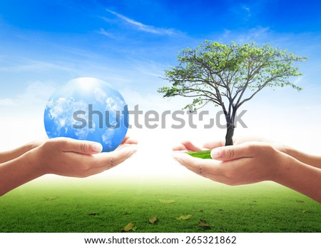 First, human hands holding big tree. Second, human hands holding Blue planet over nature background. Ecology concept.