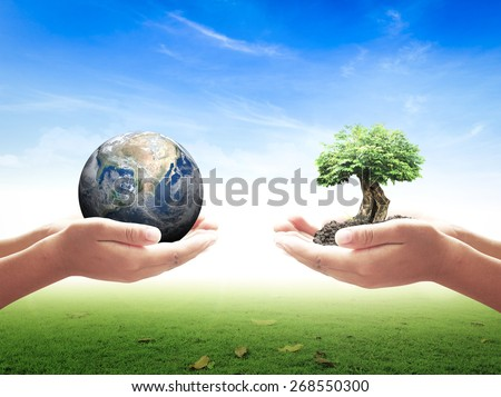 First, human hands holding planet. Second, human hands holding big tree over nature background. Ecology concept.Elements of this image furnished by NASA.