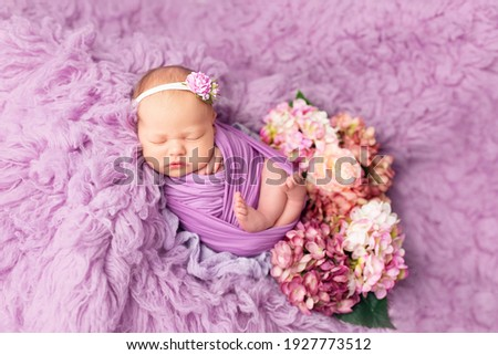 first photo session newborn baby. newborn. the child lies on a purple blanket. newborn baby girl in hydrangea flowers. photo session of a newborn
