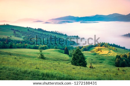 First rays of the sun cover the mountain hills of the Carpathian valley. Foggy morning scene of Carpathians, Ukraine, Europe. Beauty of nature concept background. #1272188431