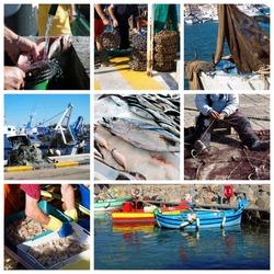 Fish and fishing