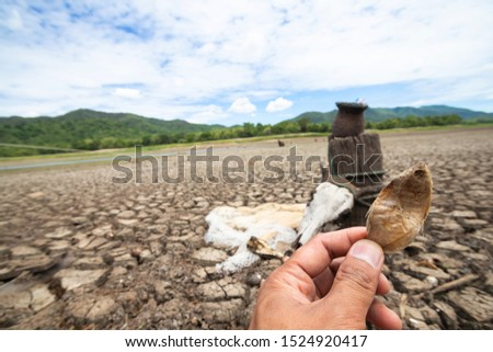 Fish and shellfish are dead with Land with dry and cracked ground because dryness global warming,Global warming background