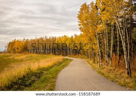 Fish Creek Park Trail at Fall