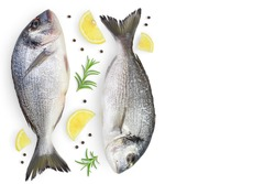 Fish dorado isolated on white background with clipping path and full depth of field. Top view with copy space for your text. Flat lay