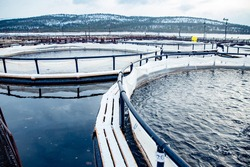 Fish farm for breeding for rainbow trout and salmon fry in net cages. Concept aquaculture pisciculture.