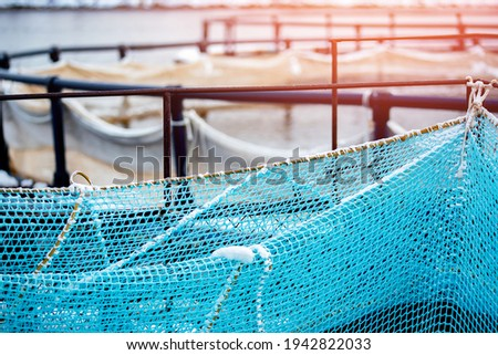 Fish farm for breeding for rainbow trout and salmon fry in net cages. Concept aquaculture pisciculture. Foto d'archivio ©