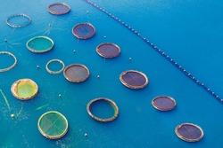 Fish farming aquaculture, top view