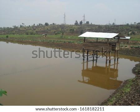 Fish farming mixed with rabbit farming