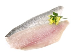 Fish - Gilthead Sea Bream Fillet