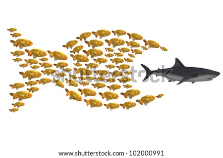 fish group chasing shark, concept unity is strength, 3d illustration