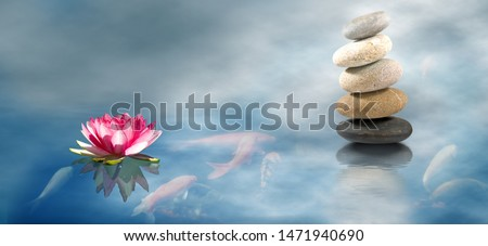 fish in water, lotus flower and stones #1471940690