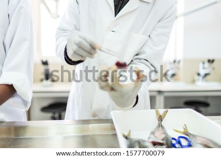 Fish interior to be tested in laboratory, quality test.