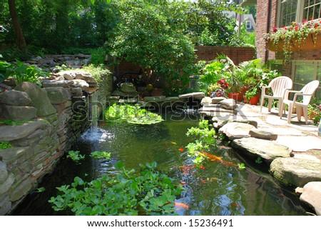 Fish pond - stock photo