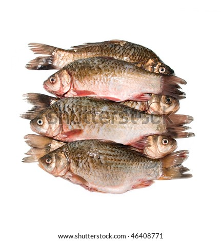 fish ready to cooks