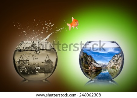 fish rethink and change concept  Stock photo ©