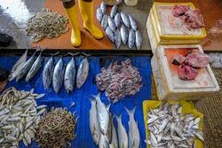 Fish sellers at the Trincomalee market in Trincomalee, Sri Lanka.