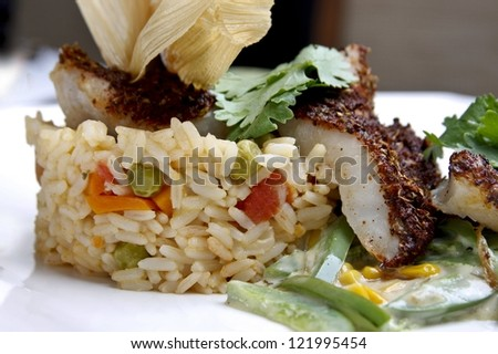 Fish with rice - stock photo