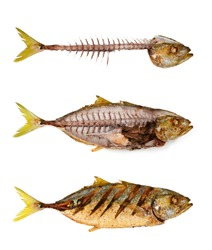 Fishbone with fried fish