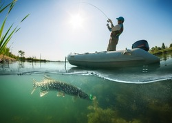 Fisherman and pike, underwater view