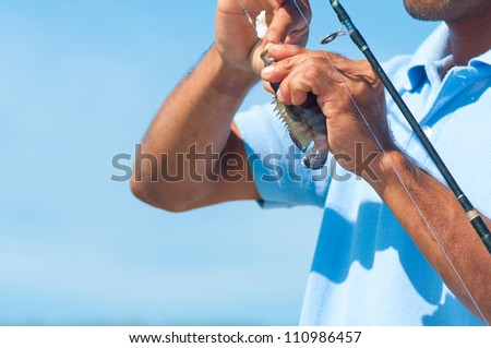 Fisherman Catches a Perch Fish