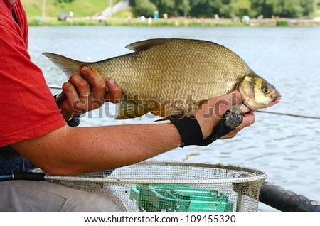 Fisherman holding a big bream catching in river