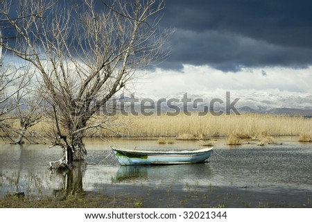 Fisherman's boat in a pond/lake amongst an eerie dead nature view of the calm before a big storm, with a beautiful, yet spooky mountain landscape