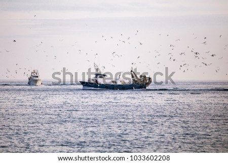 fisherman ship on the see with birds in the background #1033602208