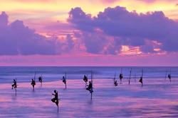 Fishermen on stilts in silhouette at the sunset in Galle, Sri Lanka