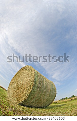 fisheye view of the hay bale in the field