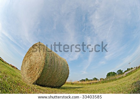fisheye view of the hay in the field