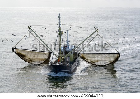 Fishing boat dragging a net through the water of the Waddensea, The Netherlands. Lots of seagulls #656044030