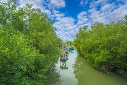 Fishing boat in the mangrove forest community in Chanthaburi Province Which is located in the eastern part of Thailand,Can Gio Mangrove Forest, Vietnam