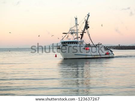 Fishing boat trawler entering harbor at Ventura at dawn with lights and birds following