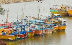 Fishing boats docked in srilankan fishery port during corona period period