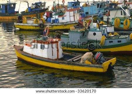 fishing boats in southern chile