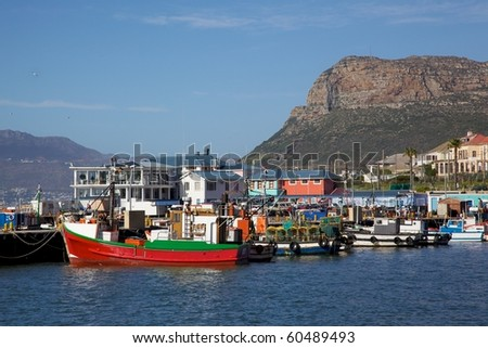 Fishing boats moored in Kalk Bay Harbour, Cape Peninsula, South Africa.