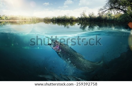 Fishing. Close-up shut of a fish hook under water #259392758
