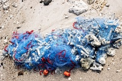 Fishing net is abandoned on shore by poachers. Cheap (disposable) nets pollute water bodies and kill many fish. Tropical sea and coral debris and sponge in net