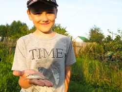 fishing on the pond. the boy shows a small fish in the palm of his hand. a tiny catch.